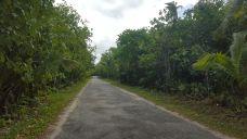 La ruta principal