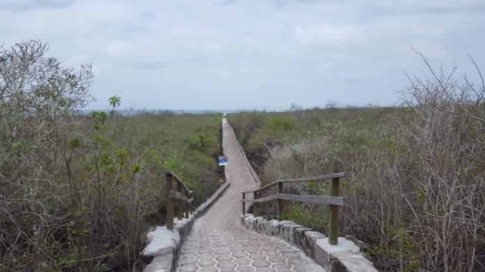 Camino a Tortuga Bay