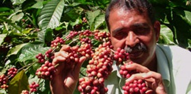 kerala-Fairtrade coffee farmer