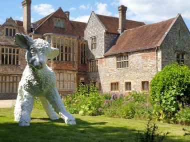 12 Lamb at The Kings House, Salisbury