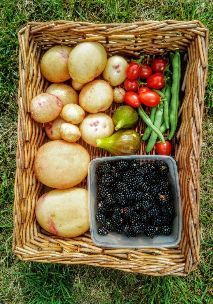 Roger Harrison's harvest