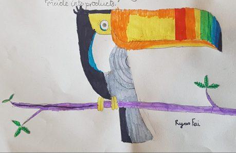 Endangered Toucan -- Ryan Fai