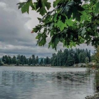 Washington tidelands
