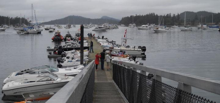 Winter Cove public dock
