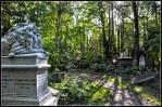 cementerio abney park londres 2011 (8)