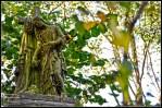 cementerio abney park londres 2011 (9)
