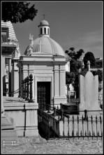 cementerio san miguel malaga 2012 (3)