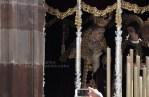 semana santa malaga salitre24 pepe lopez salutacion (11)