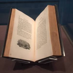 History of English Birds at the Charlotte Bronte exhibit