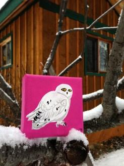 """Snowy Owl"" Size: 4""x4"" Medium: Fluid Acrylic"