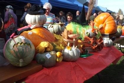 Lincoln Pumpkin Festival 19