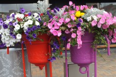 Restart Mall - flowers