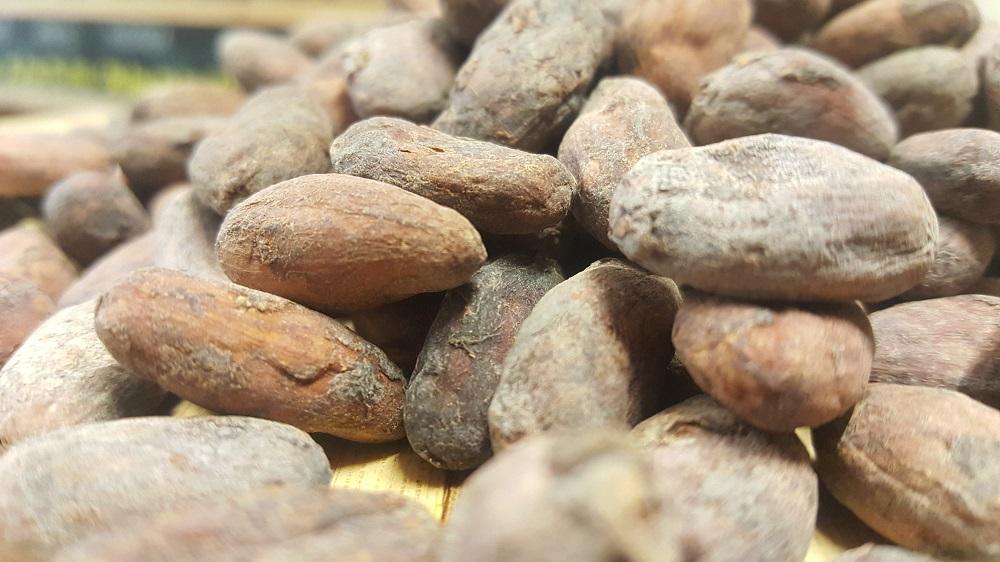 sally pepper-spices-tienda-especias-madrid-cacao-granos-semilla
