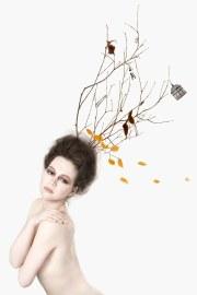 tree hair sally plottel