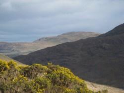 view in Connemara