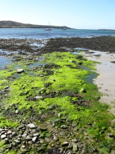 Clifden beach