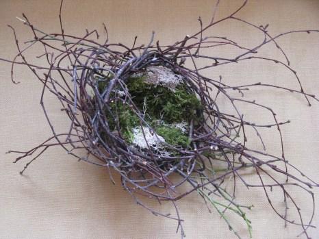 Nest - silver birch and moss