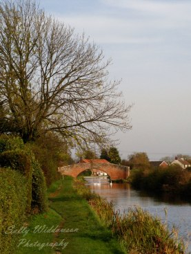 bridge over Chesterfield canal in Misterton village on an autumn day portrait