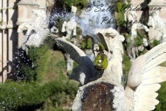 dragon fountain parc de la ciutadella barcelona