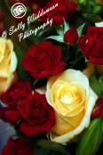 Miniature red roses large cream ivory rose bouquet