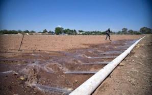 Exhorta SDAyR a cuidar los sistemas de riego tecnificado