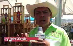 LICOR DE TUNA, NOPAL Y XOCONOZTLE ARTESANAL EN ESTA EXPO-NOPAL…