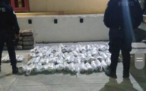 #PurísimadelRincón ASEGURAN 175 MIL DOSIS DE MARIHUANA.