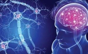 #Salud Esclerosis múltiple, enfermedad neurodegenerativa y multifactorial