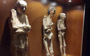 #Estado MUSEO DE LAS MOMIAS SERÁ ABIERTO EN LA CAPITAL,…