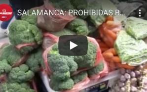 PROHIBIDAS BOLSAS PLÁSTICAS, POPOTES Y UNICEL EN SALAMANCA, HABRÁ MULTAS.