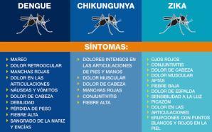 #Salud PREGUNTAS FRECUENTES SOBRE EL DENGUE, CHIKUNGUNYA Y ZIKA.
