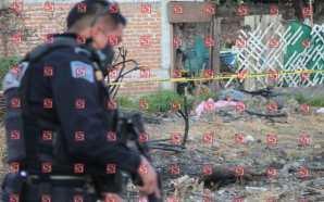 DURANTE EL MES DE FEBRERO SE HAN REGISTRADO 19 HOMICIDIOS…