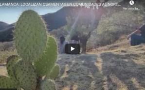 LOCALIZAN OSAMENTAS EN COMUNIDADES AL NORTE DEL MUNICIPIO.