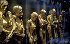 #Estado DIPUTADOS AUTORIZAN DEUDA DE 69 MDP PARA NUEVO MUSEO…