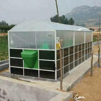 Teenwin Biogas Digester