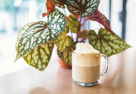 Craft And Common Coffee Shop Instagram Worthy Coffee Shop In Orlando