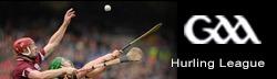 GAA hurling league