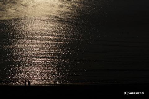 キラキラ光る塩谷の海