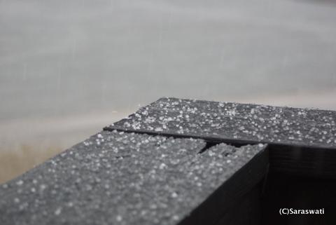 つぶつぶ雪