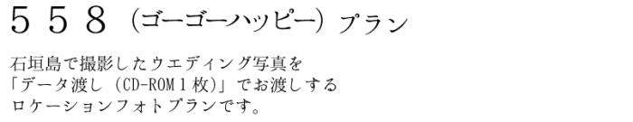 ウエディングフォトツアー 石垣島で撮影したwedding写真を「データ渡し(CD-ROM1枚)」でお渡しするロケーションフォトプランです