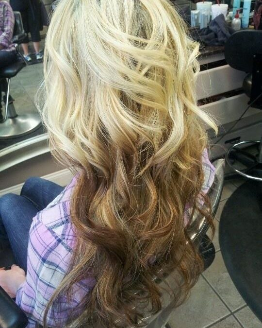 The Reverse Ombre Salon Lg 858 344 7865