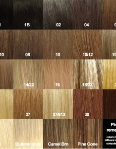 also color ring human hair extension rh salonprohes