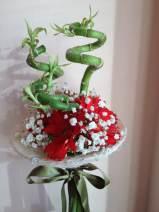 Flori noiembrie 047