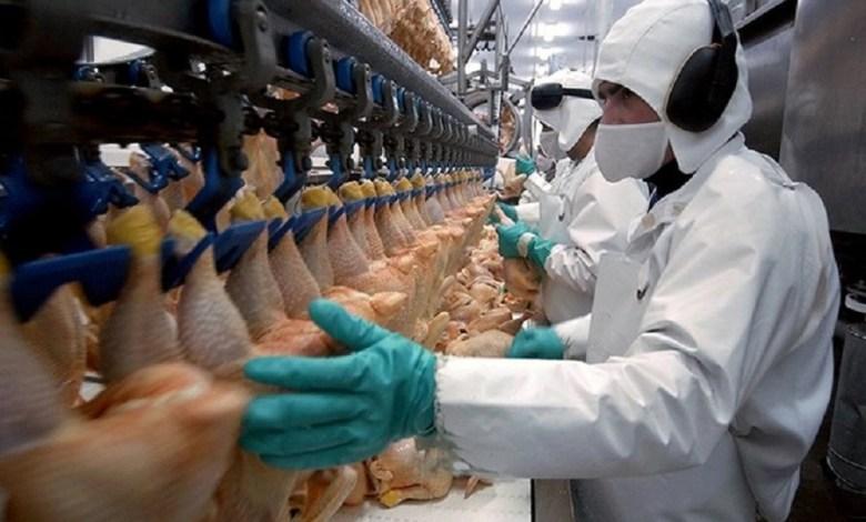 Carne de pavo Fuente: Gobierno de Chile.