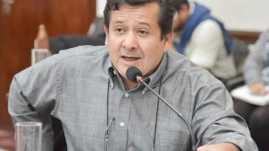 """Photo of Alvarado: """"Me hubiera gustado que Leavy lance su campaña a gobernador con propuestas"""""""