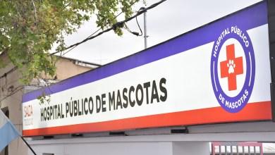 Photo of En Año Nuevo sí habrá guardias en el Hospital Municipal de Salud Animal