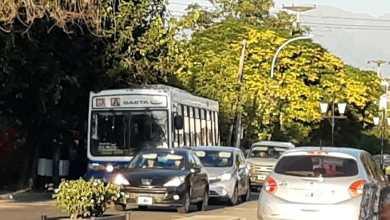 Photo of Aseguraron que los colectivos demorarán mucho tiempo en «recuperar los volúmenes de pasajeros» en Salta