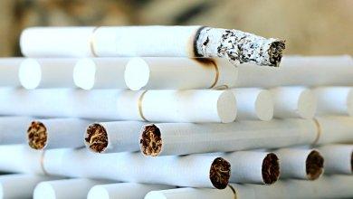 Photo of Un senador detalló la ley para evitar la venta de cigarrillos ilegales en Salta