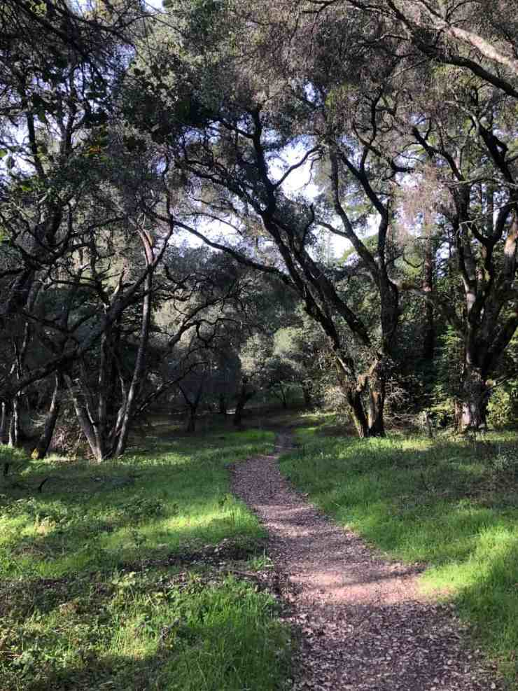 Quail Hollow Ranch Italian Trail