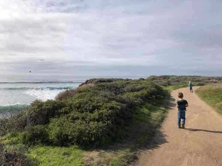 two little boys running on a dirt trail on a bluff above the ocean. Wilder Ranch State Park, Santa Cruz CA